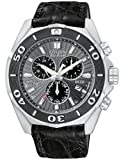 Citizen Signature Eco-Drive Perpetual Men's Chronograph Date Watch BL5440-07H