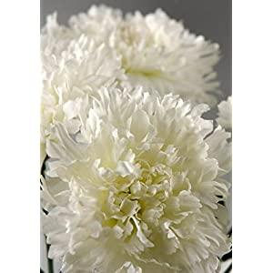 Wayhome Fair One Dozen White Silk Carnations - Excellent Home Decor - Indoor & Outdoor 103