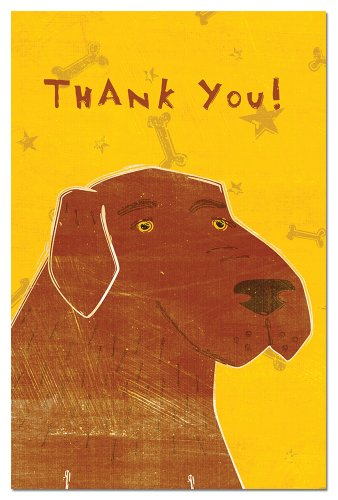 Tree-Free Greetings Eco-Notes Thank You Card Set, 4 x 6 Inches, 12-count Cards with Envelopes, Chocolate Lab (92988)