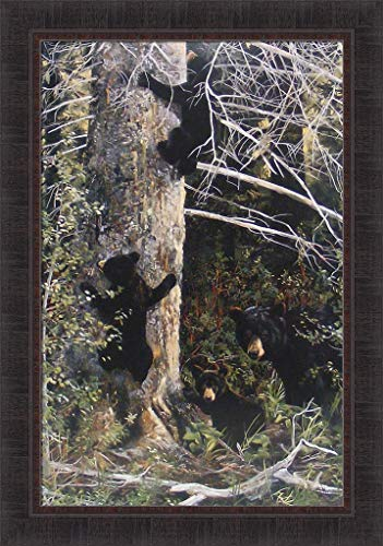 - Family Gathering by Andrew Kiss 24x34 Black Bears Cubs Climbing Tree Mama Bear Framed Art Print Wall Décor Picture