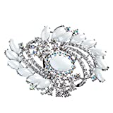 ACCESSORIESFOREVER Women Bridal Wedding Jewelry Crystal Rhinestone Classy Brooch Pin BH176 Silver