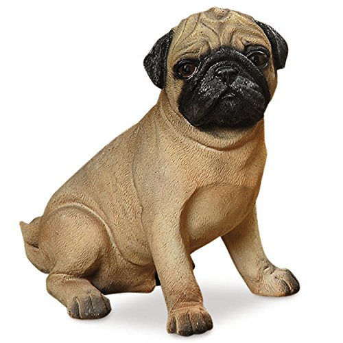 Perry Pug, The Seated Puppy Dog Statue, For Indoor and Garden Displays, Ultra-realistic Figurine, 1 Ft Tall, Hand Cast and Painted, Polyresin, By Whole House Worlds (Puppy Dog Garden Sculpture)