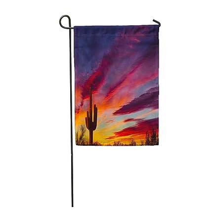 Amazon.com: Semtomn - Bandera de jardín colorida con diseño ...