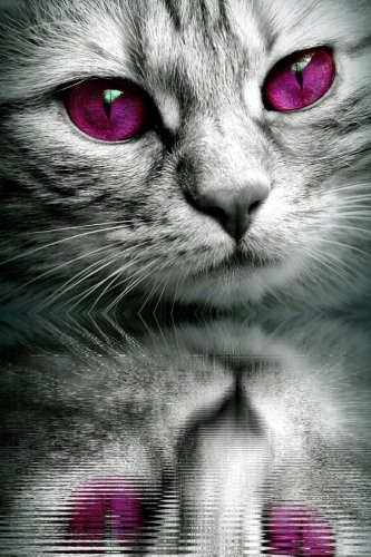 Kitty Cat with Purple Eyes Journal: Take Notes, Write Down Memories in this 150 Page Lined Journal ebook