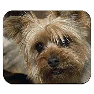 Yorkshire Terrier Yorkie Dog Mouse Pad Mousepad 6