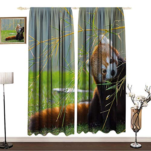 Bohogift 100% Blackout CurtainsW55 x L84 InchesAfricaCurtain partition Living roomCute Red Panda on The Field Playing with Bamboo Branches Native Himalaya MountainsReduce Curtain noiseBrown Red.GIF]()