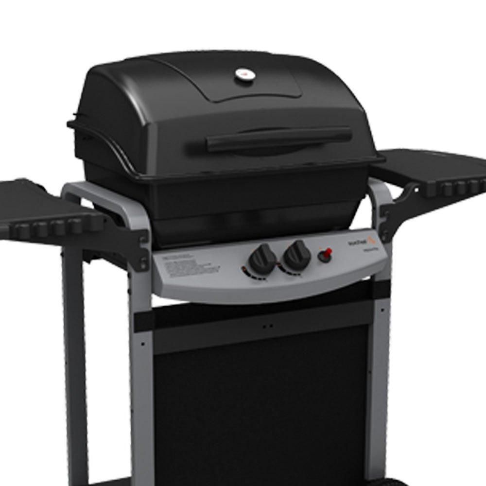 BBQ parrilla de gas de acero inoxidable 2 quemadores con ...
