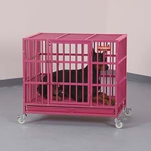 ProSelect Empire Color Cage for Pets, Medium, Blue Splash