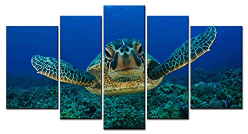 ClassiceDecorArt Wall Art Paintings - 5 Pieces Decor Art of Tortoise Head Flippers-sea-green-turtle-chelonia-mydas-maui-hawaii-usa-turtle Painting - The pictures Print on Canvas for Modern Home - It Maui Picture Framed