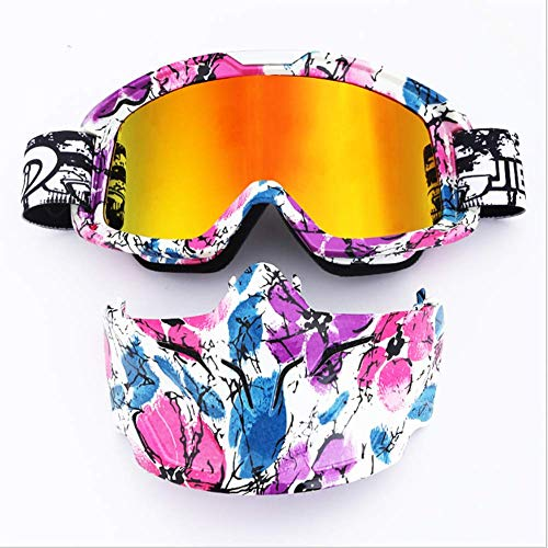 HXRYFC Ski Snowboard Goggles, Mask Goggles Motocross Racing Goggles Outdoor Riding Glasses (Riot Ski)