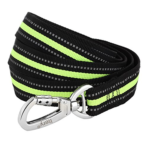 Dog Leash, Itery Reflective Dog Leash Pet Safety Walking and Trainning Leash 6 Feet Length 1 Inch Width (Green)