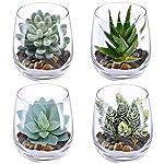 Supla-4-Set-Artificial-Fake-Succulent-Plants-Echeveria-Terrarium-Glass-Containers-Decorations-Clear-4-Artificial-Succulents11-Lb-White-Sand132-Lb-Stone-4-Glass-Containers-1-Floral-Wire-Cutter