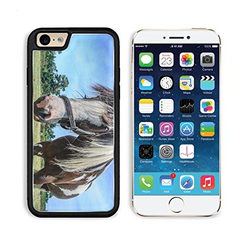 apple-iphone-6-6s-aluminum-case-close-up-beautiful-horse-portrait-on-blue-sky-new-zealand-image-3465