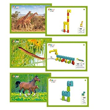 Unbekannt Poly M Kartensets Tiere 15 Vorlagekarten Bausteine