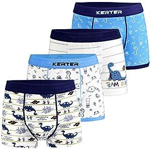 Dinosaur Truck Toddler Boys Boxer Shorts Briefs 6 Pack Baby Kids Cotton Underpants 2-9 Years Auranso Boys Underwear