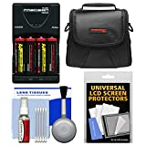 Essentials Bundle for Sony Cyber-Shot DSC-H300 Digital Camera with Case + Batteries & Charger + Accessory Kit