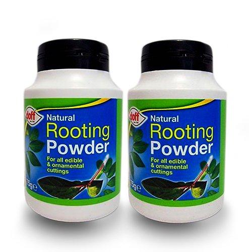 8 opinioni per Doff®- Ormoni radicanti in polvere, 75 g, aiuta a crescere radici nuove e