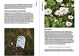 The Crafty Gardener: Inspired Ideas and DIY