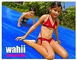Wahii Waterslide 50 - Worlds Biggest Backyard Lawn Water Slide!