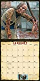 Walkers: The Eaters, Biters, and Roamers of AMC The Walking Dead 2019 Wall Calendar, 12 x 12, (CA-0370)