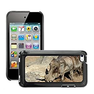 Etui Housse Coque de Protection Cover Rigide pour // M00108798 Warthog Zoo Animal salvaje // Apple ipod Touch 4 4G 4th