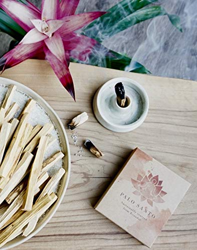 Aria Premium Palo Santo Holy Wood Incense Sticks - 100% Natural, Wild Harvested, Sustainably Sourced (8). for Cleansing, Purifying, Healing, Meditation and Stress Relief by Aria (Image #2)