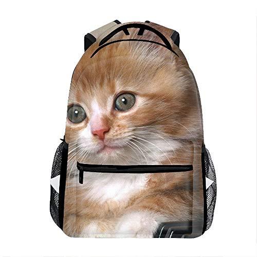 School Backpack Classic Travel Laptop Kittens Muzzle Keys Lie Fluffy Backpack Rucksack Middle School Bookbag