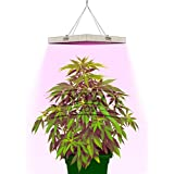 VINTAGE GROW | Best LED Grow Lights for Indoor Plants | Perfect for Growing a Small Plant | Dual Spectrum for Veg and Flower | Highly Efficient | More Light with Less Power and Heat | 45W Panel
