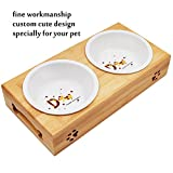 MLCINI Ceramic Dog cat Bowls Set,Bamboo Raised Elevated Dog cat Bowls Non Slip Rubber feet Stand and 2 White Ceramic Bowls for Small Medium Dog cat pet