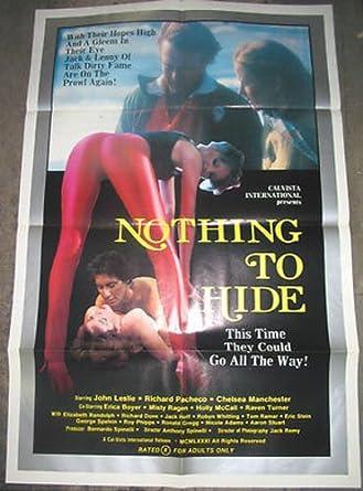 Nothing To Hide Original One Sheet Movie Poster Erica Boyer