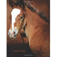 Foal Play: A Discreet Internet Password Organizer
