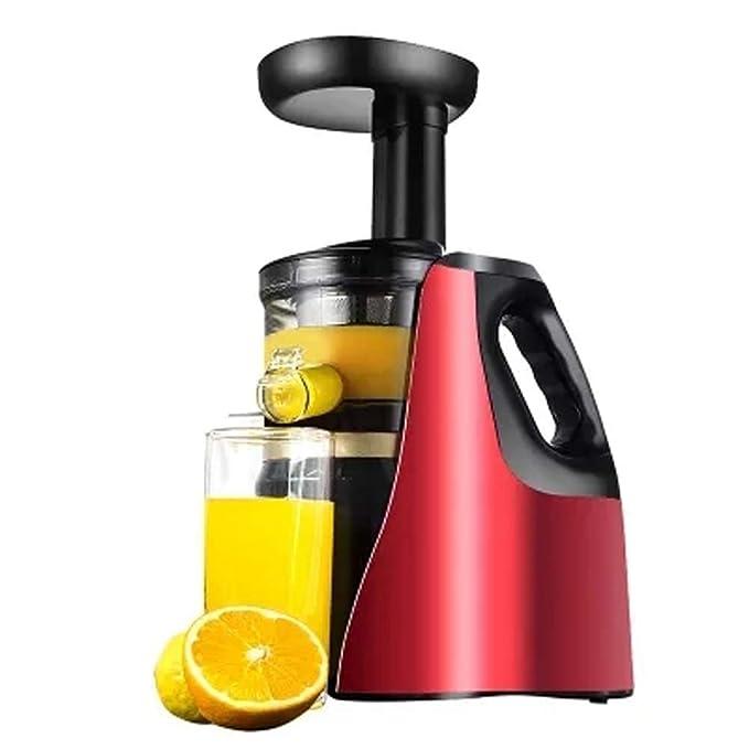 WGFGXQ Family Slow Juicer. 150W. Automatic Fruit Vegetable Juicer.