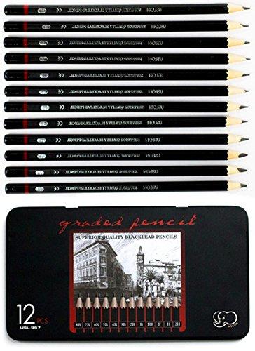 Black Pencils Wood (Professional Sketch and Drawing pencils set,Art Pencil 12-Count(8B-2H).)