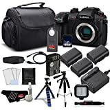 Panasonic Lumix DC-GH5S Mirrorless Micro Four Thirds Digital Camera DC-GH5S- Platinum Plus Level Bundle- International Version
