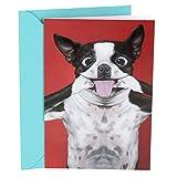 warehouse deals open box face - Hallmark Shoebox Funny Birthday Greeting Card (Dog Smile)