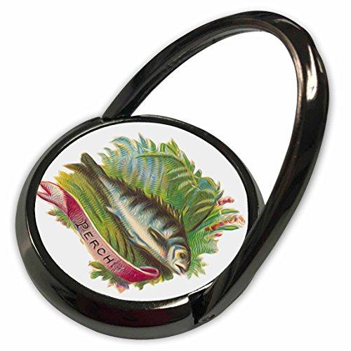 3dRose Dooni Designs Vintage Designs - Vintage Victorian Fish Illustration Perch Faux Oil Painting Effect - Phone Ring (phr_119040_1) ()