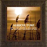 Agriculture By Todd Thunstedt 17.5x17.5 Farm All Farming George Washington John Deere IH Farmall Allis Ford Combine Pig Sheep Lamb Holstein Dairy Hereford Beef Angus Jersey New Verse Framed Art Print Wall Décor Picture