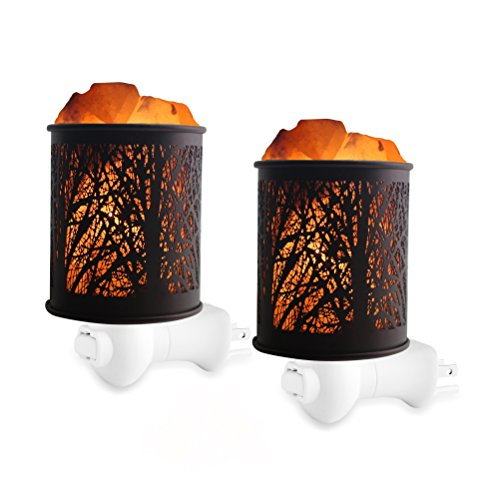 Natural Himalayan Salt Rock Lamp,Salt Night Light,Natural Himalayan Salt Rock Lamp,Mini Crystal Wall Light Night Lights,ETL Approved Wall Plug for Decoration and Lighting,2 Pack by Shineled