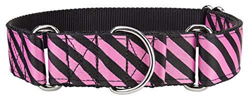 Country Brook Design - 1 1/2in Fabulous Stripes Ribbon Martingale Collar - Medium