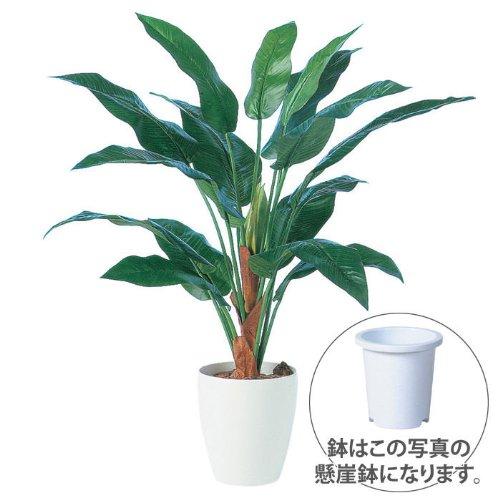 エフプランター 人工観葉植物-ストレリチア15-100-7号鉢-懸崖鉢 B00FZKMQC0