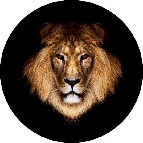 Lion Head Spare Tire Cover for 205/75R14 Jeep RV Camper and more (Select from popular sizes in drop down menu or contact us-ALL SIZES AVAILABLE) … by Tire Cover Central
