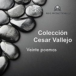Coleccion Cesar Vallejo