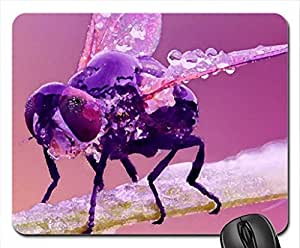 Pink fly Mouse Pad, Mousepad (Watercolor style)