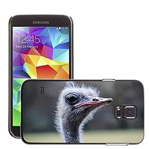 Etui Housse Coque de Protection Cover Rigide pour // M00111143 Ramo Animal Pájaro Ave incapaz de volar // Samsung Galaxy S5 S V SV i9600 (Not Fits S5 ACTIVE)