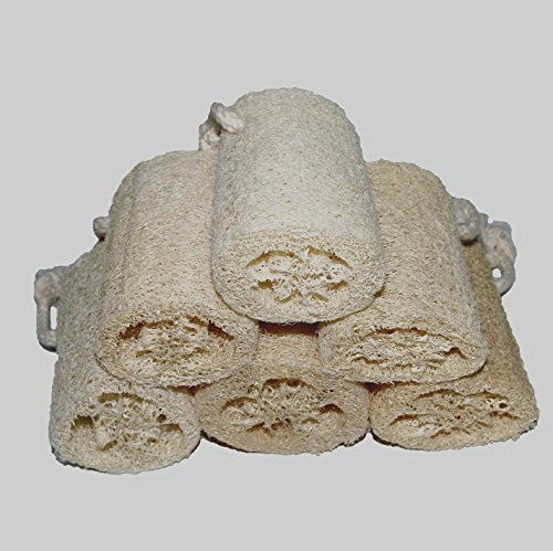 Mini Loofa (Classic Natural Exfoliating Loofah Luffa Loofa Sponge Scrubber Brush Face Body Shower Bath Spa by 6 Pack of 4