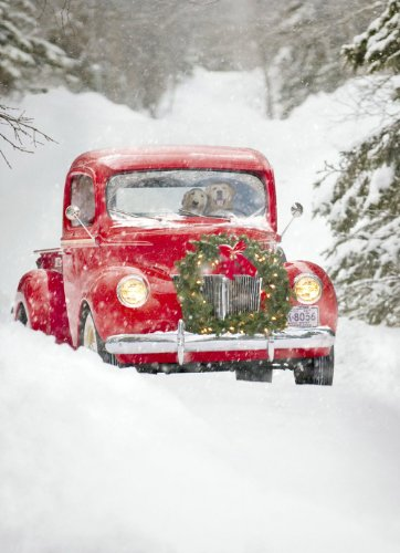 Avanti Christmas Cards, Old Fashioned Truck, 10 Count (Card Christmas Fashioned Old)
