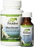 PetAlive LiverAid and GlucoBalance ComboPack