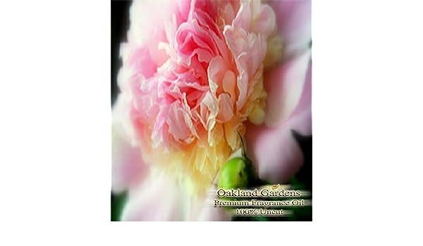 Peony Aceite Aromático - Gentle Barre de peonía. Pure Elegance con fuertes, agradable aroma a limpio - por Oakland Jardines: Amazon.es: Hogar