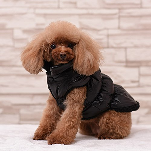 Rantow Autumn Winter Pet Dog Cat Clothes Warm Down Coat, 7 Colors Classic Pet Outwear Down Jacket for Teddy, Yorkshire Terrier, Chihuahua, Pomeranian