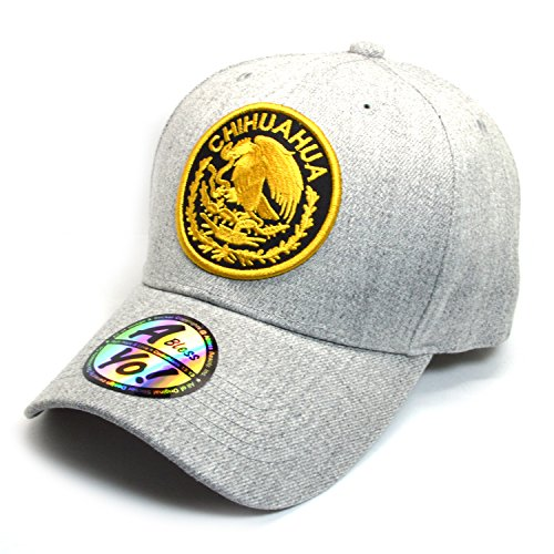 AblessYo Mexican Hat Mexico Federal Logo Embroidered Curved Baseball Cap AYO6027 (Chihuahua)